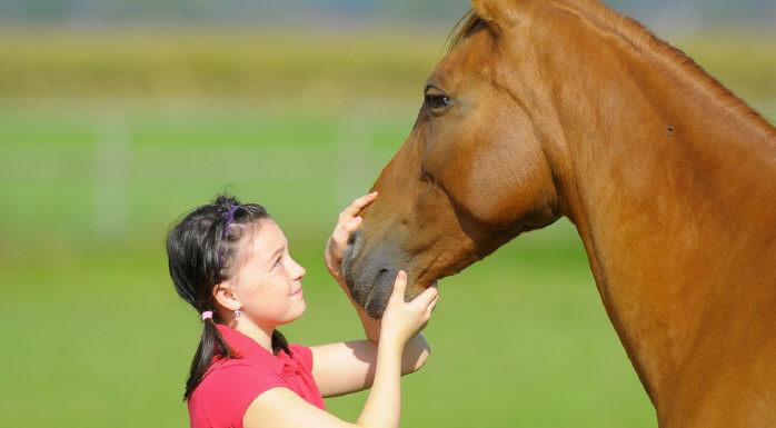 Pferdeflüsterin/Pferdeflüsterer werden